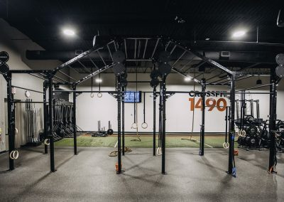 Pull Up Bars - CrossFit 1490