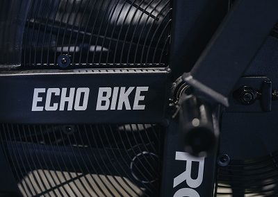 Rogue Echo Bike - CrossFit 1490